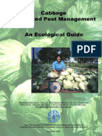 Cabbage Ecoguide 2000