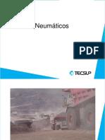 188357799-Neumaticos.pdf