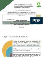 Presentación Estudio de Mercado (1)