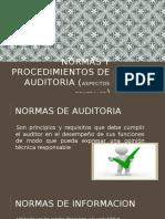 Normas y Procedimientos de Auditoria III Exp. i