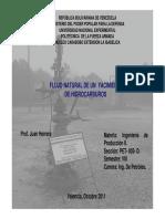 FLUJONATURAL.pdf