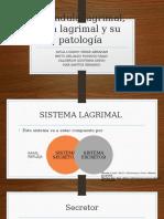Patología lagrimal