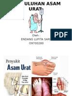 PPT-ASAM-URAT