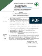 2.3.17.1 - 27 sk kepala puskesmas tentang jenis data dan informasi yang perlu disediakan di puskesmas.docx