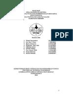 Roadmap KKN Wanoja 2016