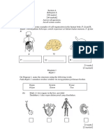Modul Set 4.pdf