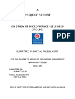 microfinance_313239619.docx