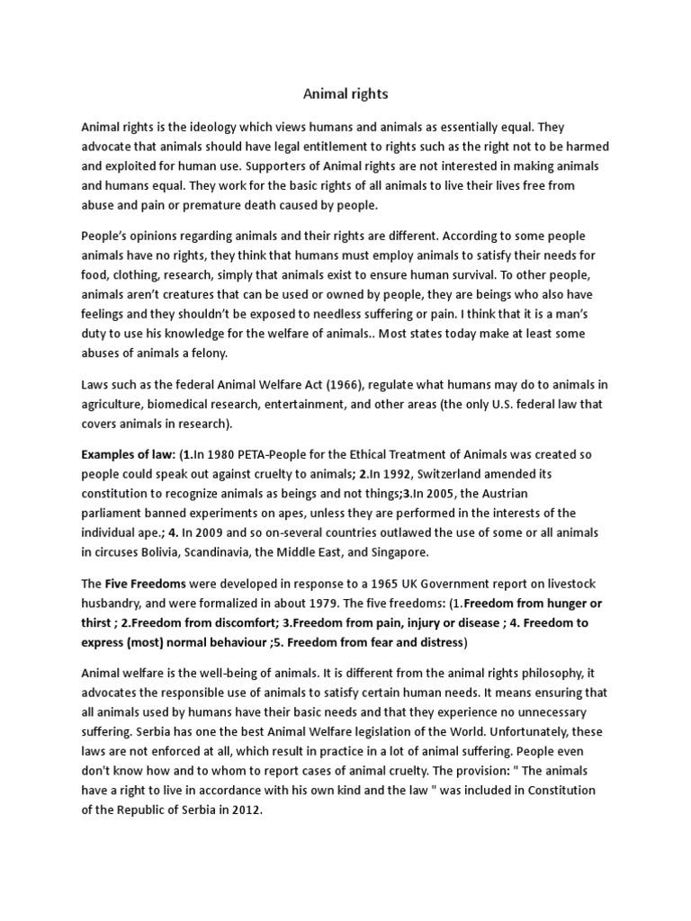 animal rights opinion essay essay