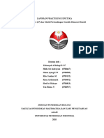 laporan-chi-square.docx