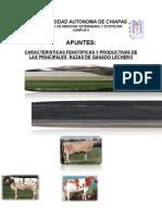 138441420-RAZAS-LECHERAS.doc