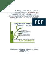 Plan De Manejo Y aprovechamiento forestal De Guadua Carminales