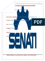 chang subsanacion Senati