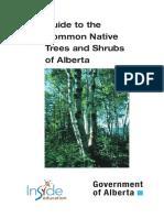TreeShrub.pdf