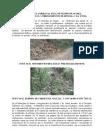 DIAGNOSTICO AMBIENTAL.pdf