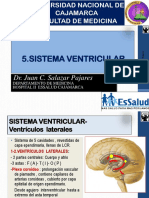 5 a SistemaVentricular 2016