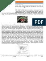 Peranan Struktur Geologi Dari Aspek Ekonomis