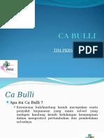 CA BULLI by Sulaks