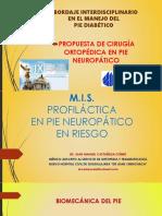 MIS en Pie Diabetico Neuropatico COMPLETO