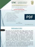 1.2.1 Presentación