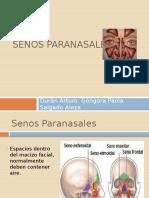 senosparanasales-121104213504-phpapp02