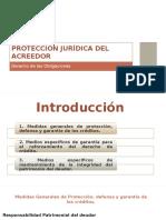 Protección Jurídica Del Acreedor