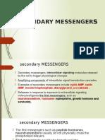 Second Messenger System