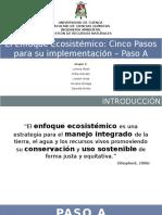 10. Enfoque ecosistemico