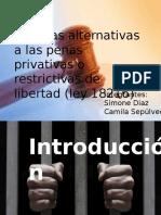 Ley 18216 Penal