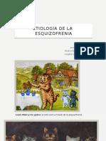 Etiologia esquizofrenia