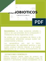 2.1 Xenobioticos Presentacion