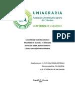 7fibra_cruda.pdf