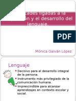 Dificultades en el Lenguaje