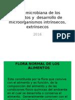 Flora Microbiana de Los Alimentos