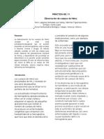 P10E5VFfragilidad osmotica