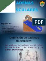 kinesioterapiacadenasmusculares-140221163845-phpapp01.pptx