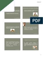 8. Registro pesado.pdf
