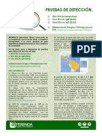 Boletin Informativo Zika Virus Febrero 2016
