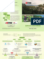 Díptico-MRSE-1.pdf