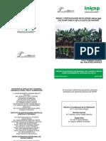 RIEGO Y FERTILIZACIÓN EN PLATANO.pdf