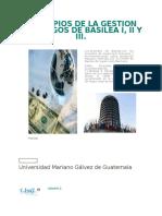 Principios de La Gestion de Riesgos de Basilea i