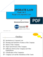 Week 2 & 3 Scope of Corporate Law