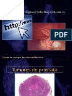 Prostata 2016