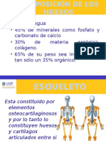 Anatomia Clase 2- Osteologia y Artrologia General (1)