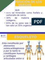 Anatomia Clase 2- Osteologia y Artrologia General (1)