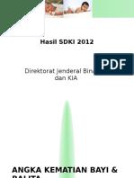SDKI 2012