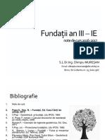 C1 - Fundații an III -IE