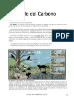 Ciclo del Carbono II.doc