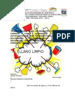 Producto de Limpiez-proyecto Endogeno. (1)