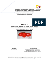 Proyecto Tomates