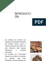 METODOLOGÍA-amilasa